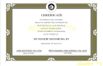 certificate by NisaArt